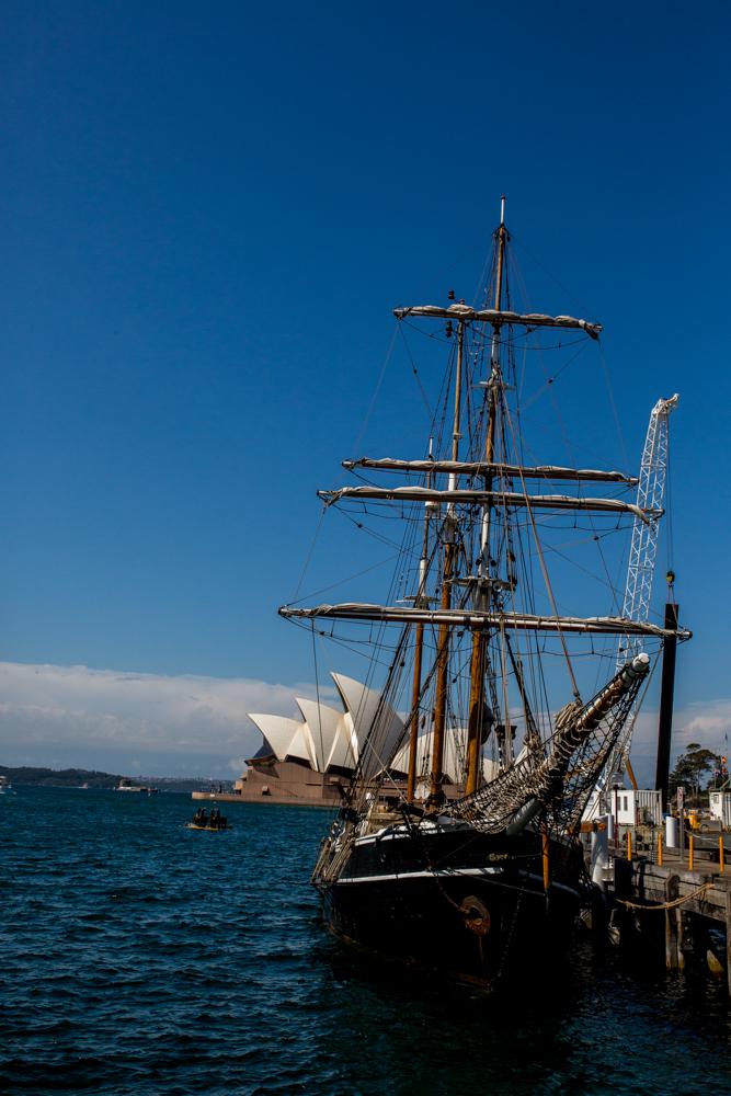 Sydney Travel Photos (11 of 24)