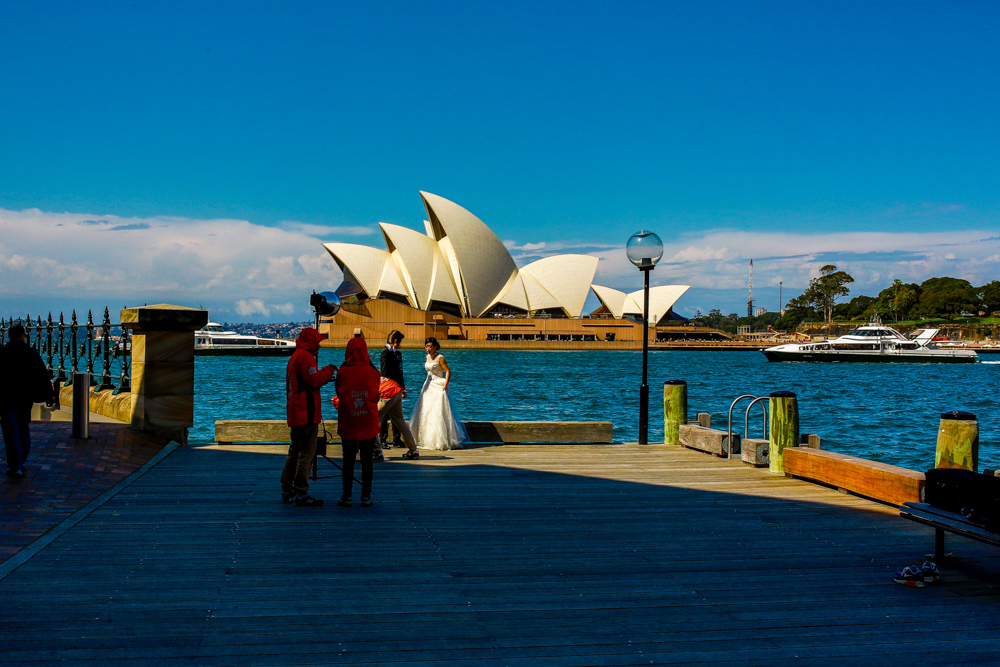 Sydney Travel Photos (14 of 24)