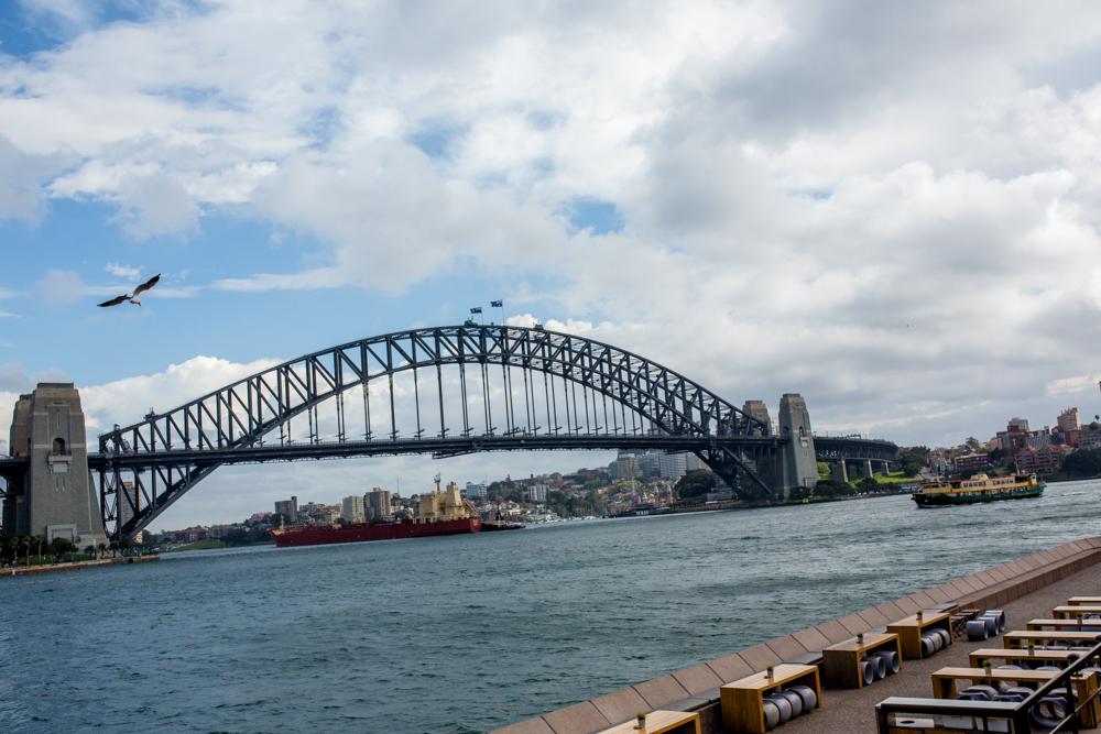 Sydney Travel Photos (2 of 24)