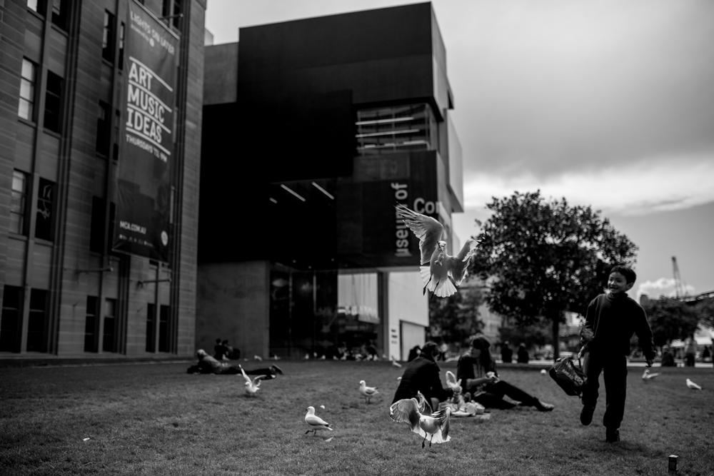 Sydney Travel Photos (23 of 24)