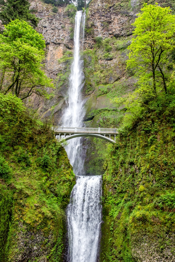 Multnoma Falls picture