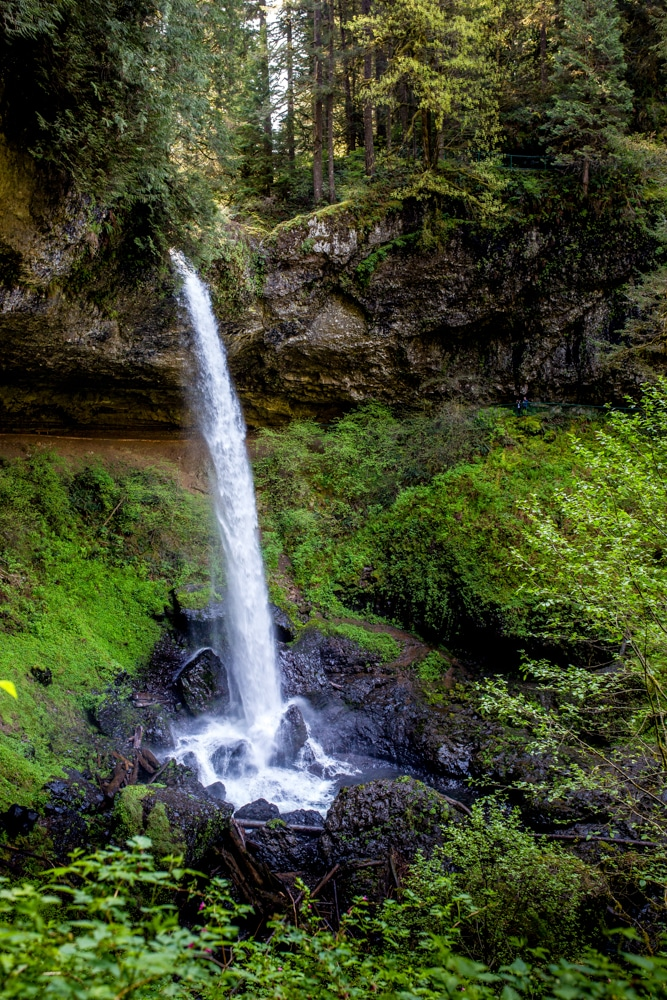 Silver Falls State Park OR 0100