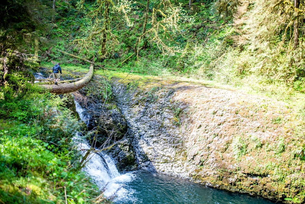 Silver Falls State Park OR 0102