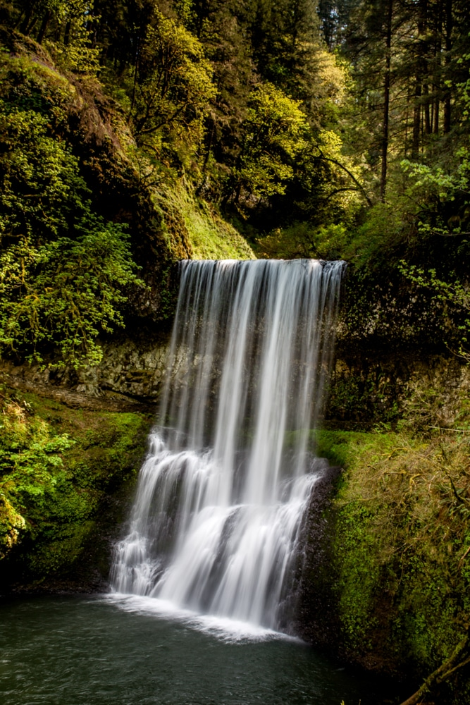 Silver Falls State Park OR 0126