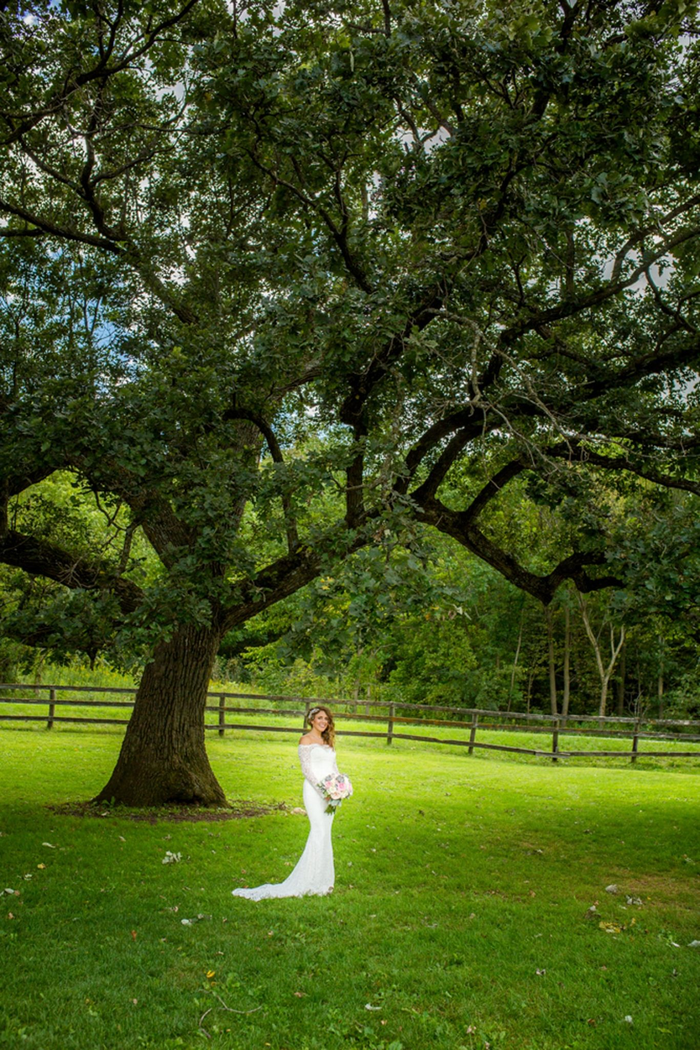 Mayowood barn Bride under tree